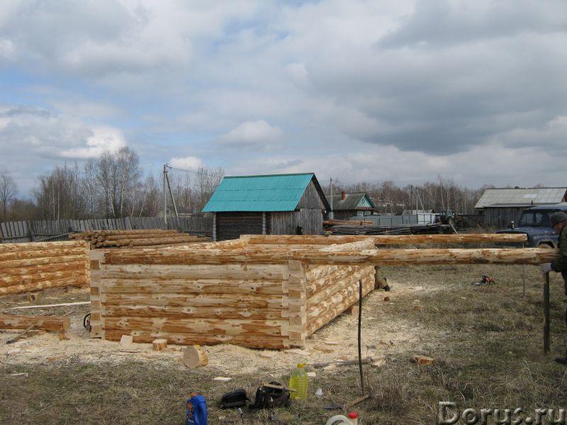 Сруб 3x6 из зимнего леса - Материалы для строительства - Продаю сруб 3*6 зимний лес, высота 2.2 м. Д..., фото 5